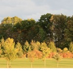 Enjoy the falls beautiful color change at Vistas at Greenwood Hills